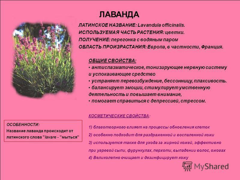 ЛАВАНДА ЛАТИНСКОЕ НАЗВАНИЕ: Lavandula officinalis. ИСПОЛЬЗУЕМАЯ ЧАСТЬ РАСТЕНИЯ: цветки. ПОЛУЧЕНИЕ: перегонка с водяным паром ОБЛАСТЬ ПРОИЗРАСТАНИЯ: Европа, в частности, Франция. ОБЩИЕ СВОЙСТВА: антиспазматическое, тонизирующее нервную систему и успок