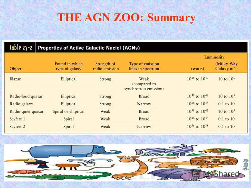 THE AGN ZOO: Summary