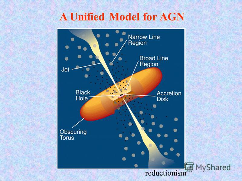A Unified Model for AGN reductionism