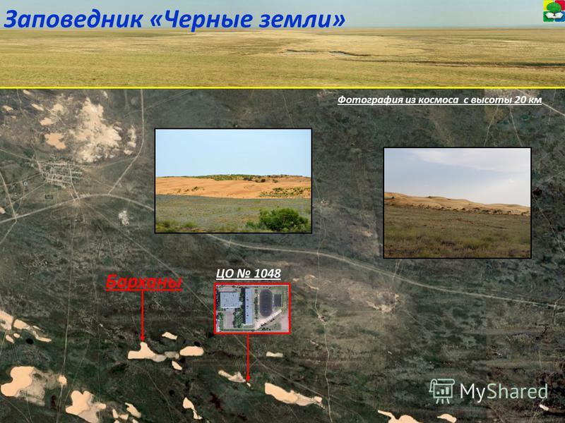 Фотография из космоса с высоты 20 км Заповедник «Черные земли» ЦО 1048 Барханы