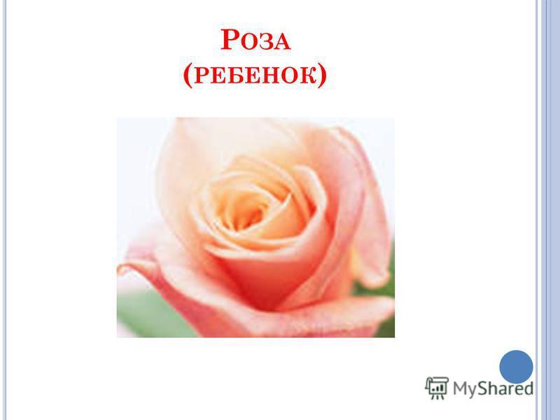 Р ОЗА ( РЕБЕНОК )