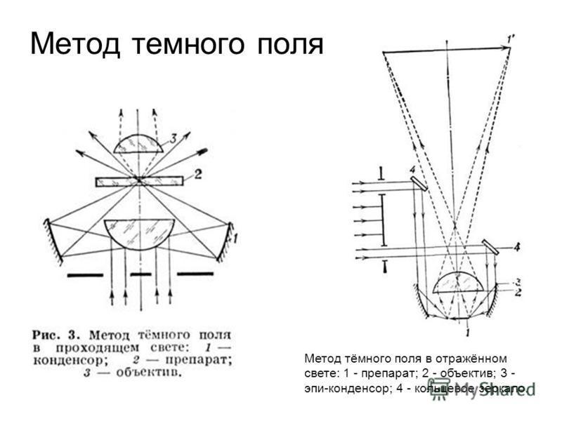Метод темного поля Метод тёмного поля в отражённом свете: 1 - препарат; 2 - объектив; 3 - эпи-конденсор; 4 - кольцевое зеркало.