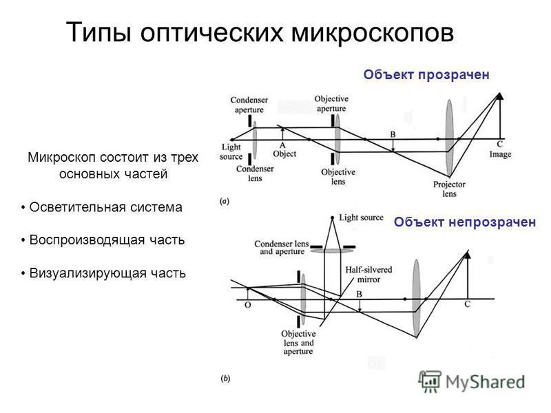 Типы оптических микроскопов Объект непрозрачен Объект прозрачен Микроскоп состоит из трех основных частей Осветительная система Воспроизводящая часть Визуализирующая часть