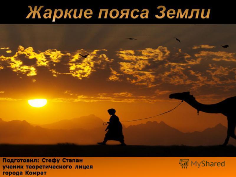 Подготовил: Стефу Степан ученик теоретического лицея города Комрат