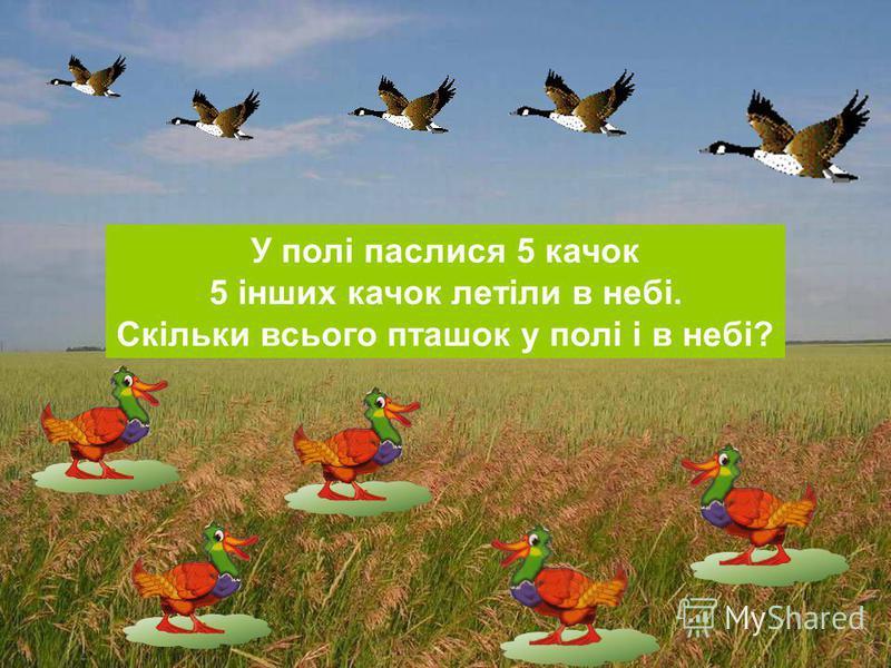 У полі паслися 5 качок 5 інших качок летіли в небі. Скільки всього пташок у полі і в небі?