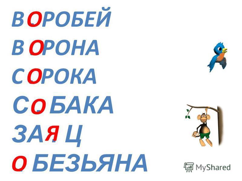 В. РОБЕЙ В. РОНА С. РОКА С. БАКА ЗА. Ц. БЕЗЬЯНА О О О О Я О