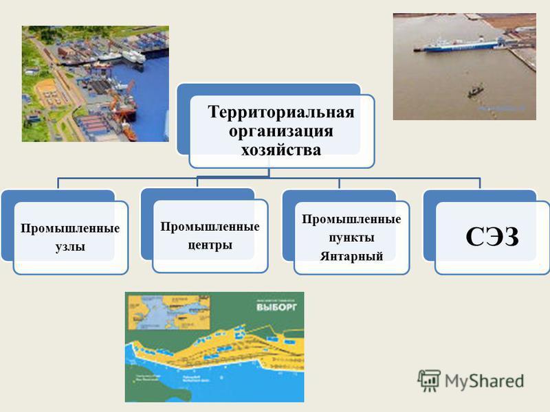 Территориальная организация хозяйства Промышленные узлы Промышленные центры Промышленные пункты Янтарный СЭЗ