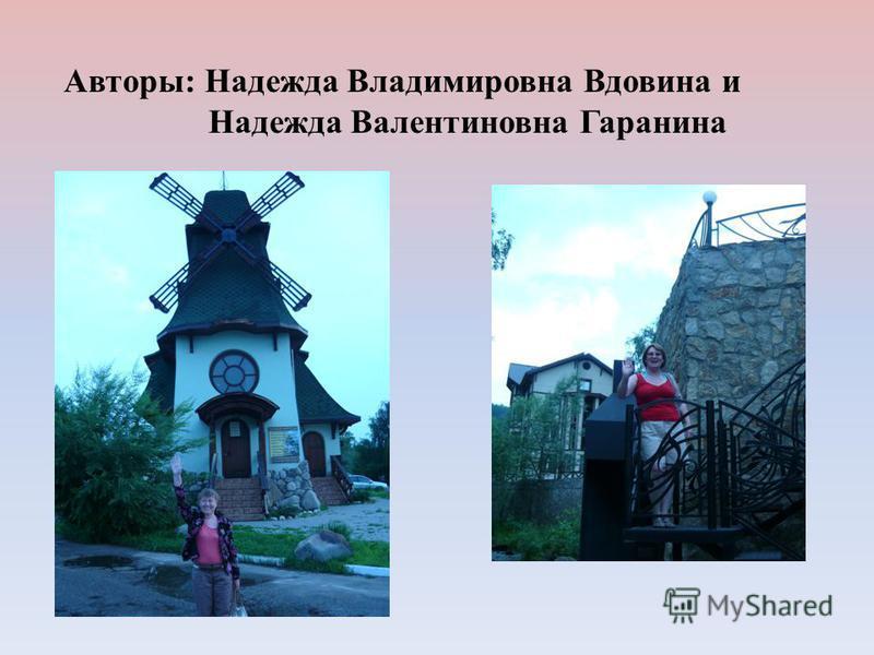 Авторы: Надежда Владимировна Вдовина и Надежда Валентиновна Гаранина