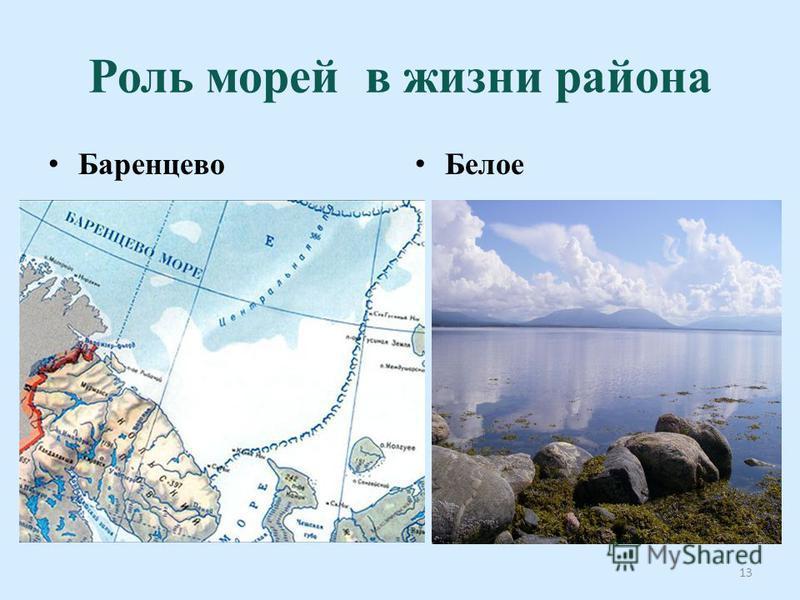 Роль морей в жизни района Баренцево Беоле 13