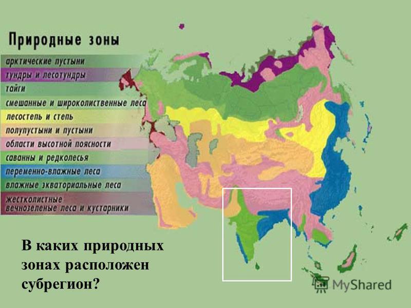 В каких природных зонах расположен субрегион?