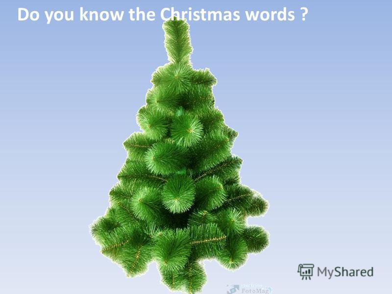 Do you know the Christmas words ?