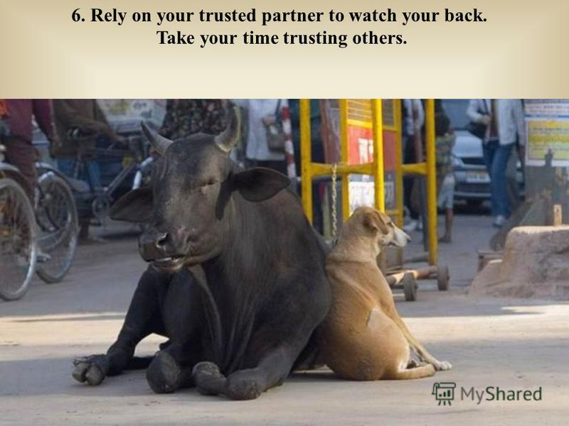 6. Rely on your trusted partner to watch your back. Take your time trusting others.