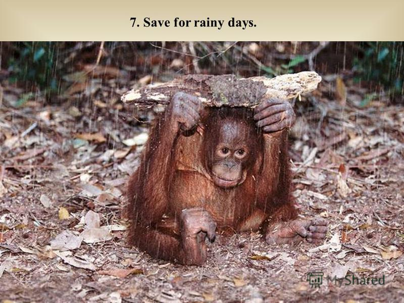 7. Save for rainy days.