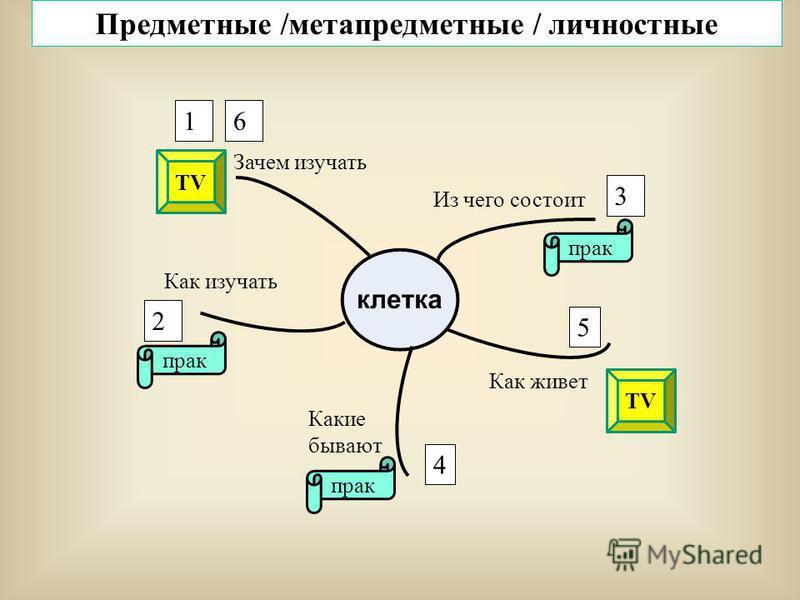 Из чего состоит Как живет Какие бывают Как изучать Зачем изучать 1 3 4 5 2 6 прак TV Предметные /метапредметные / личностные