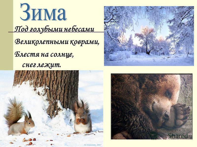 Под голубыми небесами Великолепными коврами, Блестя на солнце, снег лежит.