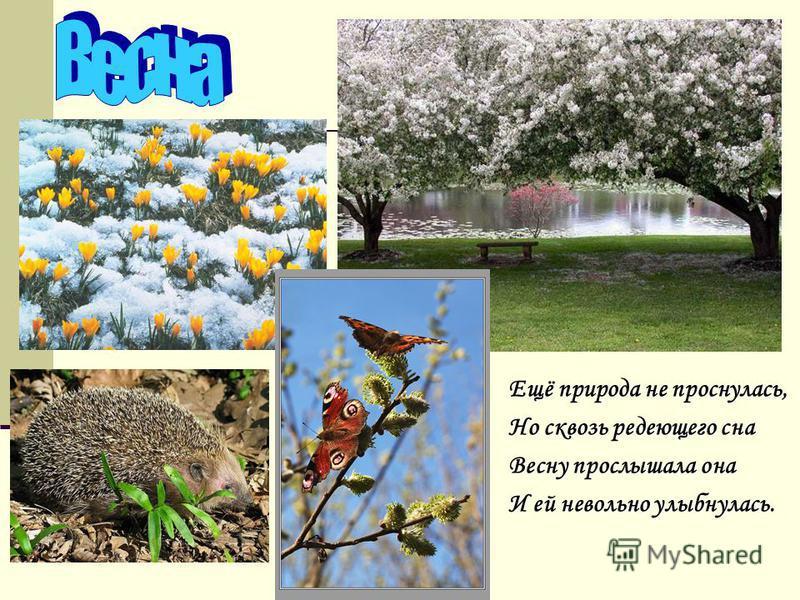 Ещё природа не проснулась, Но сквозь редеющего сна Весну прослышала она И ей невольно улыбнулась.