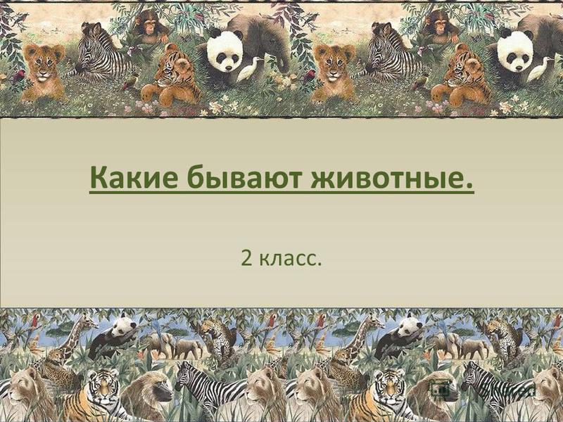 Какие бывают животные. 2 класс.