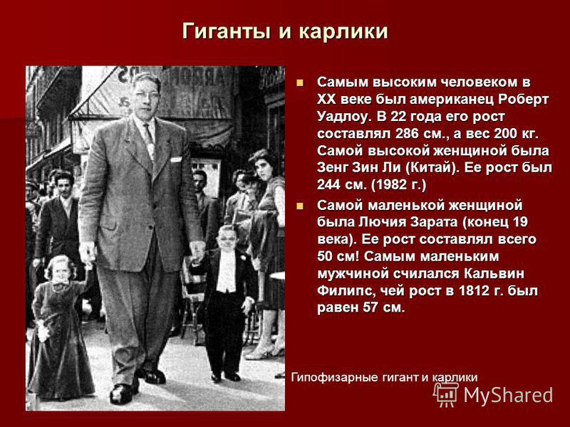 Гиганты и карлики Самым высоким человеком в ХХ веке был американец Роберт Уадлоу. В 22 года его рост составлял 286 см., а вес 200 кг. Самой высокой женщиной была Зенг Зин Ли (Китай). Ее рост был 244 см. (1982 г.) Самым высоким человеком в ХХ веке был