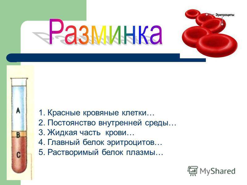 1. Красные кровяные клетки… 2. Постоянство внутренней среды… 3. Жидкая часть крови… 4. Главный белок эритроцитов… 5. Растворимый белок плазмы…