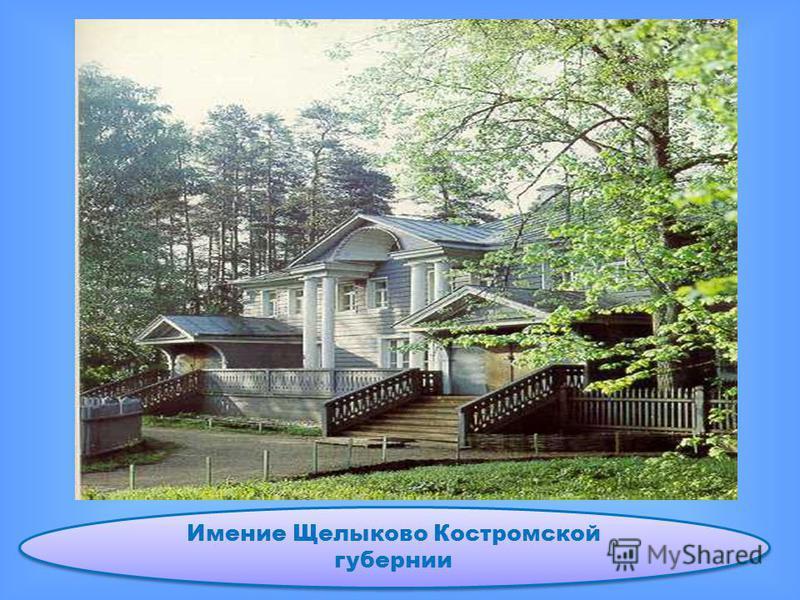 Имение Щелыково Костромской губернии
