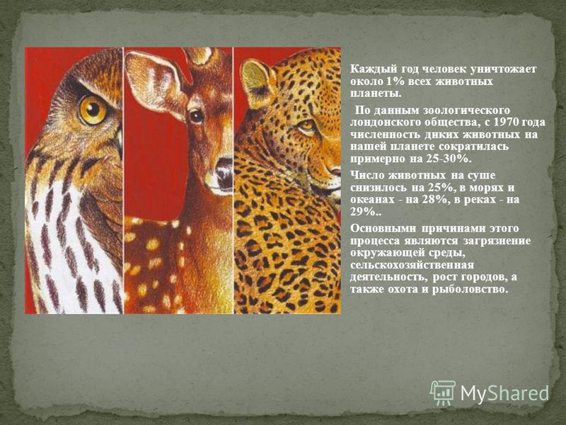 Каждый год человек уничтожает около 1% всех животных планеты. По данным зоологического лондонского общества, с 1970 года численность диких животных на нашей планете сократилась примерно на 25-30%. Число животных на суше снизилось на 25%, в морях и ок