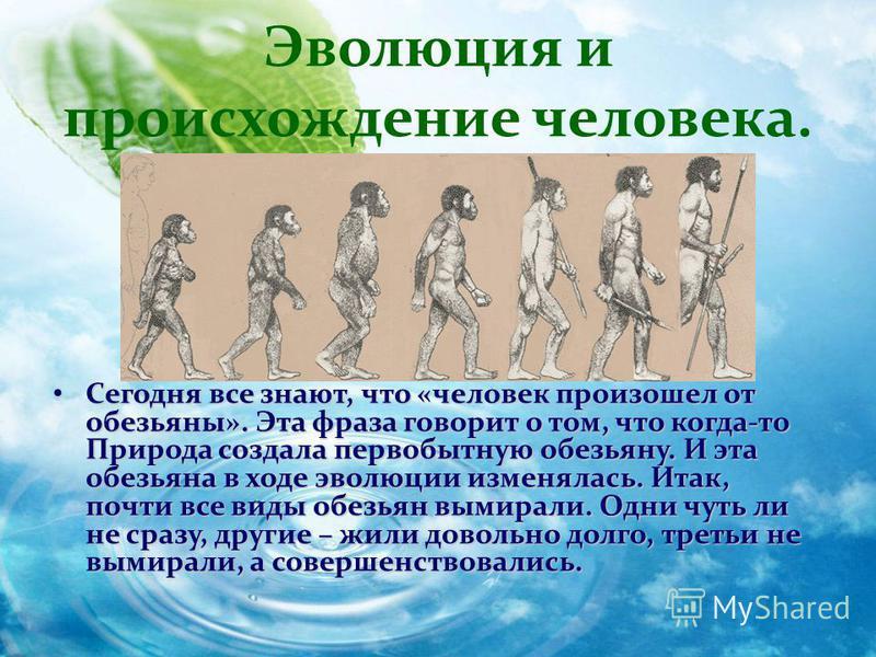 Сегодня все знают, что «человек произошел от обезьяны». Эта фраза говорит о том, что когда-то Природа создала первобытную обезьяну. И эта обезьяна в ходе эволюции изменялась. Итак, почти все виды обезьян вымирали. Одни чуть ли не сразу, другие – жили