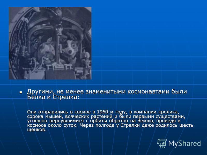 Другими, не менее знаменитыми космонавтами были Белка и Стрелка: Они отправились в космос в 1960-м году, в компании кролика, сорока мышей, всяческих растений и были первыми существами, успешно вернувшимися с орбиты обратно на Землю, проведя в космосе