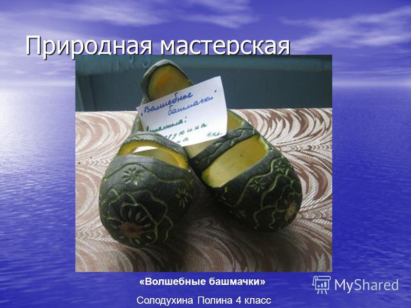 Природная мастерская «Волшебные башмачки» Солодухина Полина 4 класс