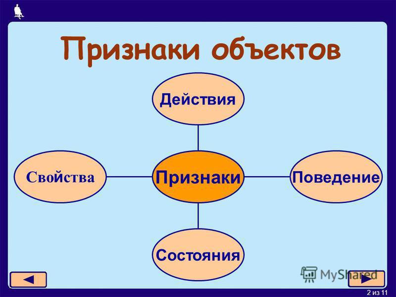 2 из 11 Сво й ства Состояния Поведение Действия Признаки Признаки объектов
