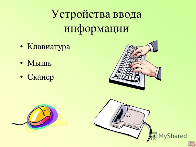 Устройства ввода информации Клавиатура Мышь Сканер