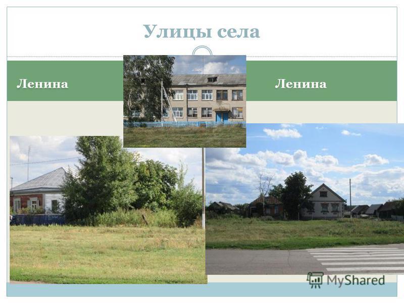Ленина Улицы села