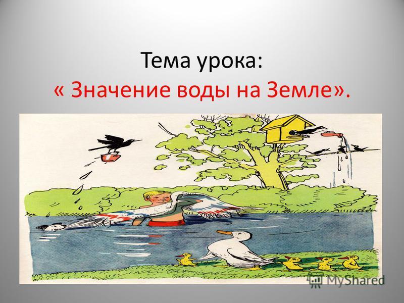 Тема урока: « Значение воды на Земле».