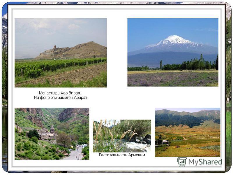 Монастырь Хор Вирап. На фоне еле заметен Арарат Растительность Армении
