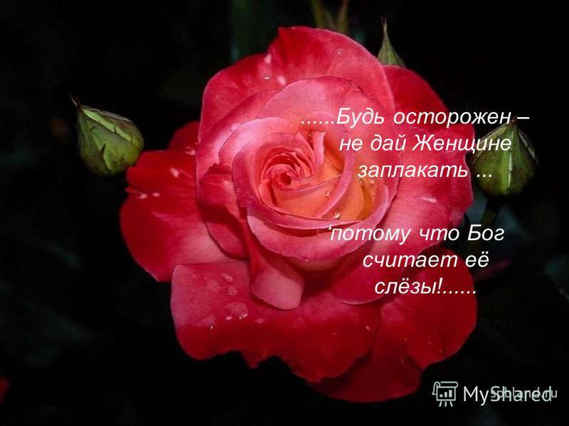 ......Будь осторожен – не дай Женщине заплакать... потому что Бог считает её слёзы!......
