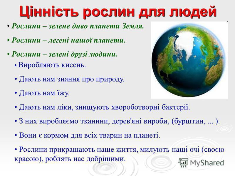 Цінність рослин для людей Рослини – зелене диво планети Земля. Рослини – легені нашої планети. Рослини – зелені друзі людини. Виробляють кисень. Дають нам знання про природу. Дають нам їжу. Дають нам ліки, знищують хвороботворні бактерії. З них вироб