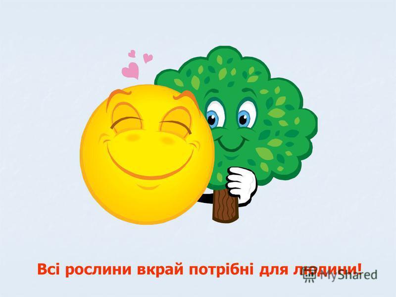 Всі рослини вкрай потрібні для людини!
