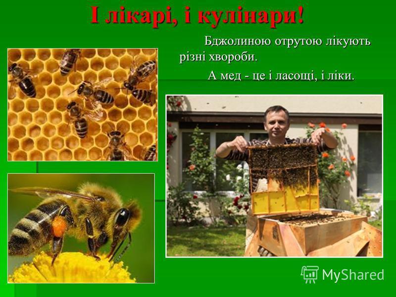 І І лікарі, і кулінари! Б Бджолиною отрутою лікують різні хвороби. А мед - це і ласощі, і ліки.