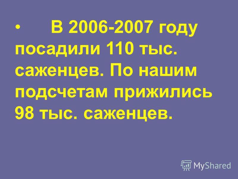 В 2006-2007 году посадили 110 тыс. саженцев. По нашим подсчетам прижились 98 тыс. саженцев.