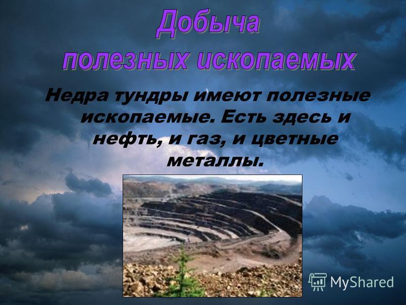 Недра тундры имеют полезные ископаемые. Есть здесь и нефть, и газ, и цветные металлы.