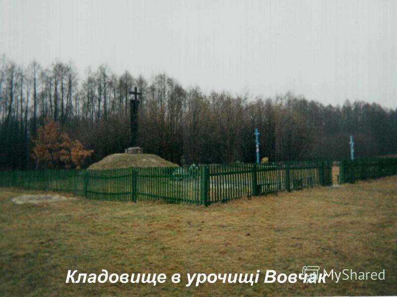 Кладовище в урочищі Вовчак