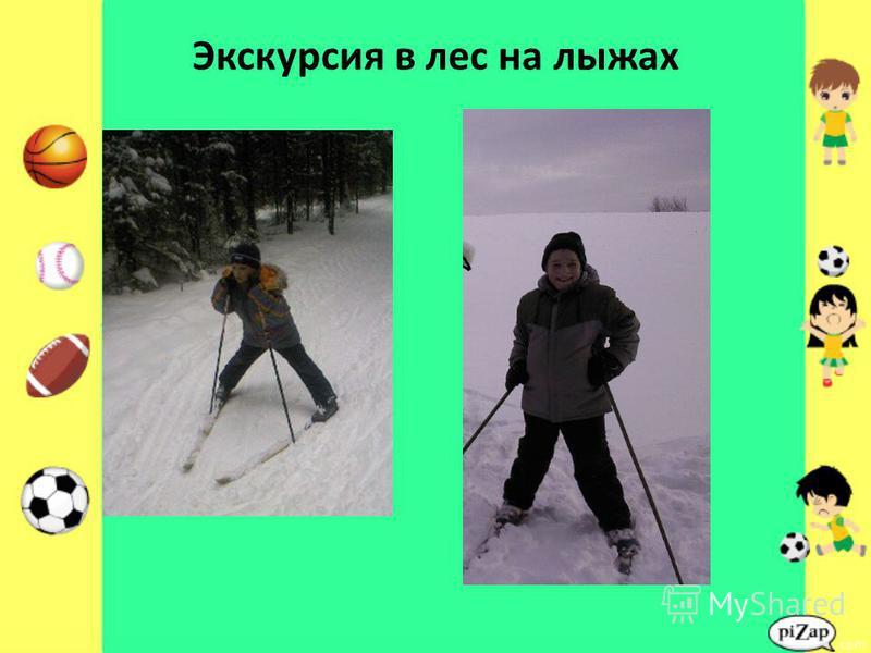 Экскурсия в лес на лыжах