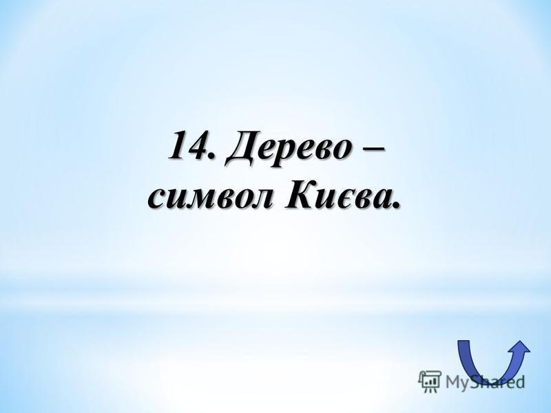 14. Дерево – символ Києва.