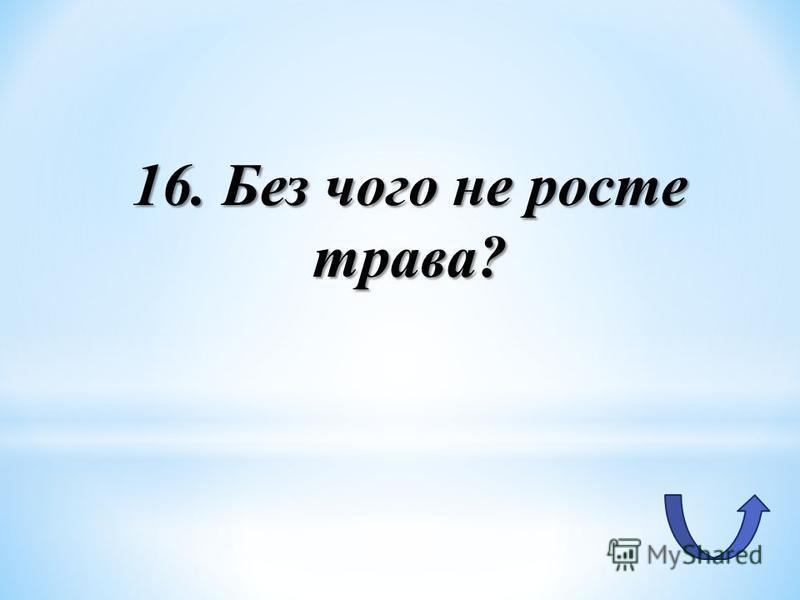 16. Без чого не росте трава?
