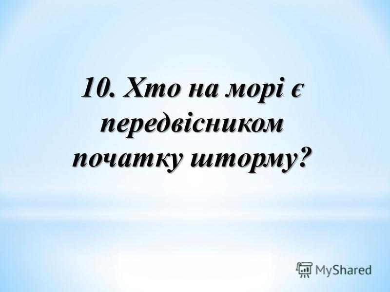 10. Хто на морі є передвісником початку шторму?