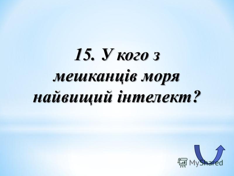 15. У кого з мешканців моря найвищий інтелект?