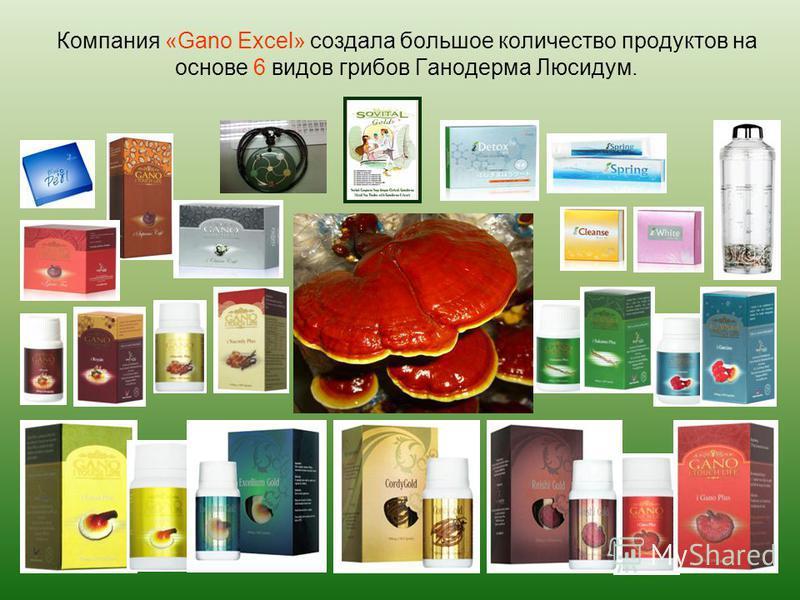 Компания «Gano Excel» создала большое количество продуктов на основе 6 видов грибов Ганодерма Люсидум.