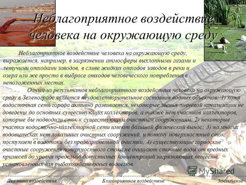 2. Благоустройство и озеленение водоохранной зоны пруда на ручье Ржавка: проведена санитарная вырубка сухих и аварийных деревьев, посажены деревья и кустарники, разбиты газоны, пешеходные мостики и тропинки, расчищена акватория пруда. В 2005 и 2006 г