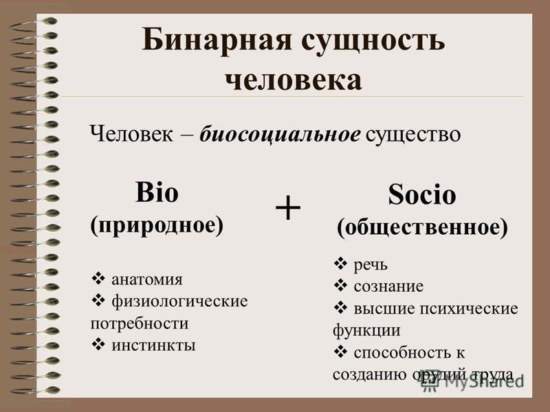 Бинарная сущность человека Bio (природное) Socio (общественное) речь сознание высшие психические функции способность к созданию орудий труда Человек – биосоциальное существо + анатомия физиологические потребности инстинкты