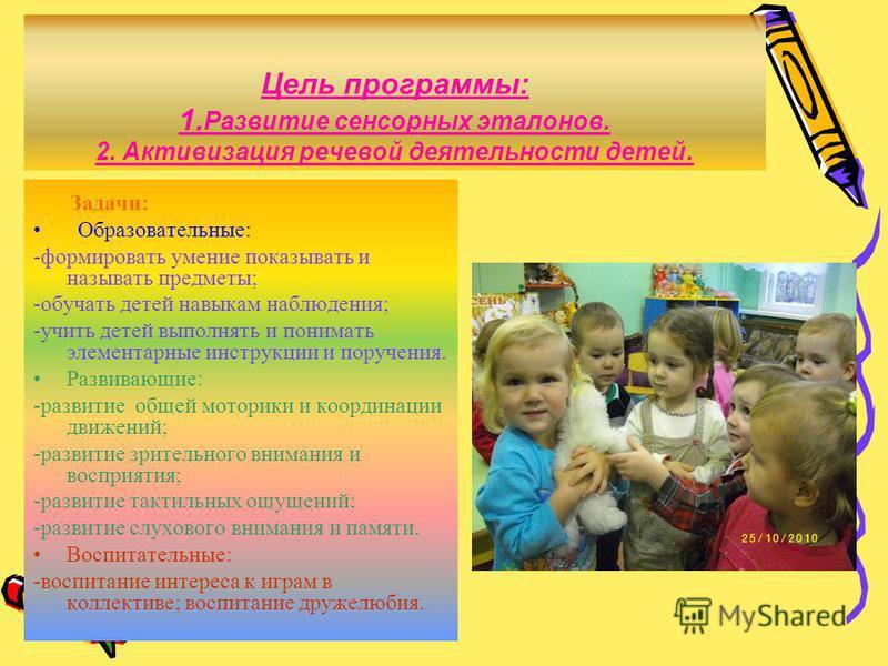 Цель программы: 1. Развитие сенсорных эталонов. 2. Активизация речевой деятельности детей. Задачи: Образовательные: -формировать умение показывать и называть предметы; -обучать детей навыкам наблюдения; -учить детей выполнять и понимать элементарные