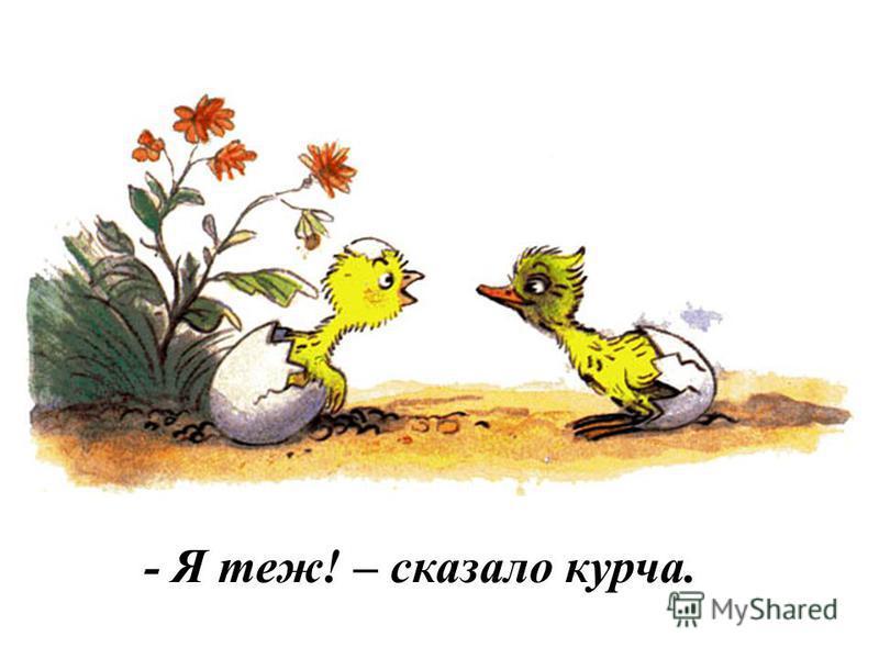 Вилупилося з яйця каченя. - Я вилупилося! – сказало воно.